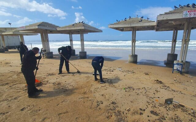 Workers clean up chunks of tar that washed up on Dado Beach in Haifa, March 12, 2021. (Fred Arzoine/Environmental Protection Ministry)