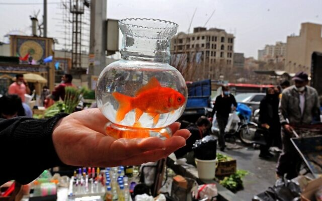 An Iranian man holds a goldfish in a bowl at the Tajrish Bazaar in Tehran on March 17, 2021, as Iran prepares to celebrate Nowruz, the Persian New Year. (Atta Kenare/AFP)
