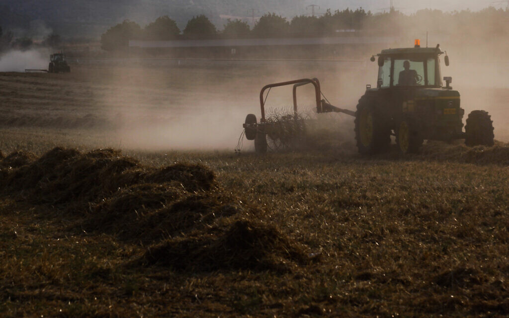 A tractor plowing a field in Kibbutz Tzora near the city of Beit Shemesh on June 25, 2015. (Nati Shohat/Flash90)