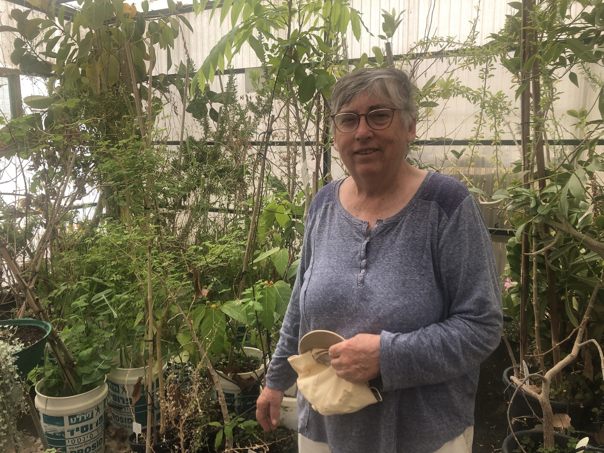 Dr Elaine Solowey in her greenhouse at Kibbutz Ketura in southern Israel, March 21, 2021. (Sue Surkes/Times of Israel)