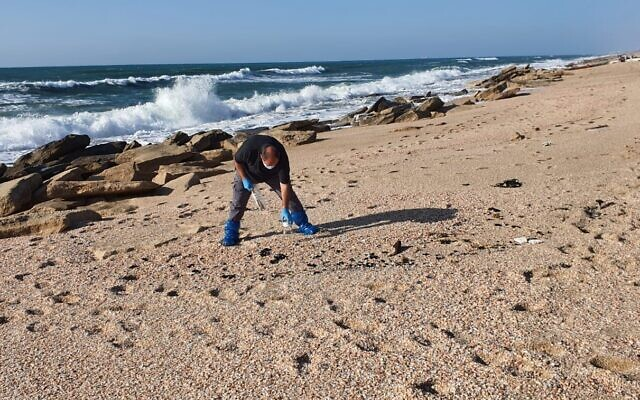 A British expert collects tar samples from a beach for detailed analysis as Israel prepares to sue the London-based International Oil Pollution Compensation Fund over a disastrous oil leak in the Mediterranean Sea in February, 2021. (Environmental Protection Ministry)