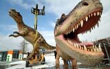 In this Tuesday, March 7, 2006 file photo, life-sized Tyrannosaurus rex models are unloaded for a dinosaur exhibition in Potsdam, Germany. (AP Photo/Sven Kaestner)