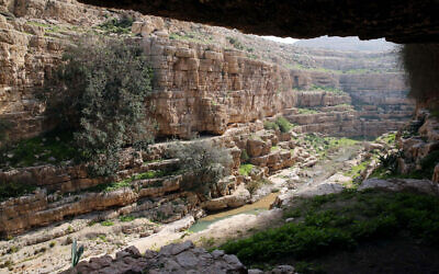 A view of the Wadi Qelt stream, in the Judean Desert in the West Bank on January 24, 2015. (Yossi Zamir/Flash90)