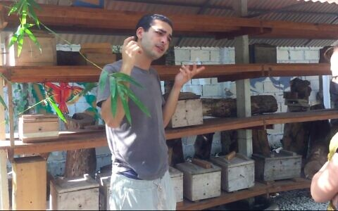Nataniel Sagi discusses the bee species he keeps at his sanctuary on Cozumel Island in Mexico, March 2021. (Julie Masis)