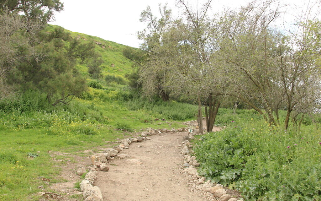 The start of the trail up to Tel Tzafit. (Shmuel Bar-Am)