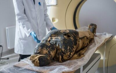 The pregnant Egyptian mummy is prepared for X-ray scans at a medical centre in Otwock near Warsaw, Poland in December 2015. (Warsaw Mummy Project)