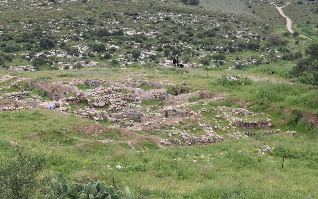 The excavation site at Tel Tzafit. (Shmuel Bar-Am)