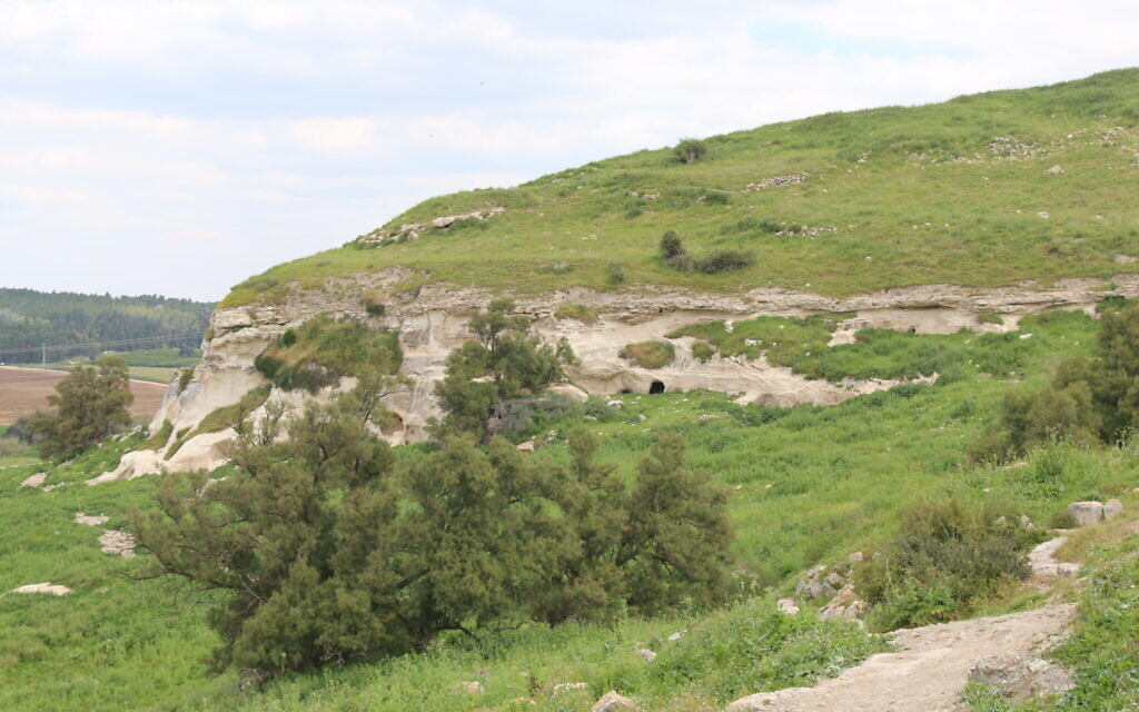 The white cliffs beneath the site of the Blanche Garde at Tel Tzafit. (Shmuel Bar-Am)