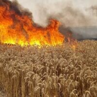 A field burns near Sderot in southern Israel on May 9, 2021. (Sha'ar Hanegev Regional Council)