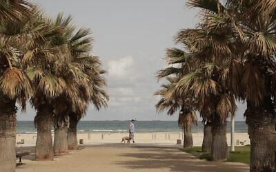 A man walks his dog near the beach in Ashkelon, Israel, Friday, May 21, 2021, after a ceasefire took effect between Hamas and Israel. (AP Photo/Maya Alerruzzo)