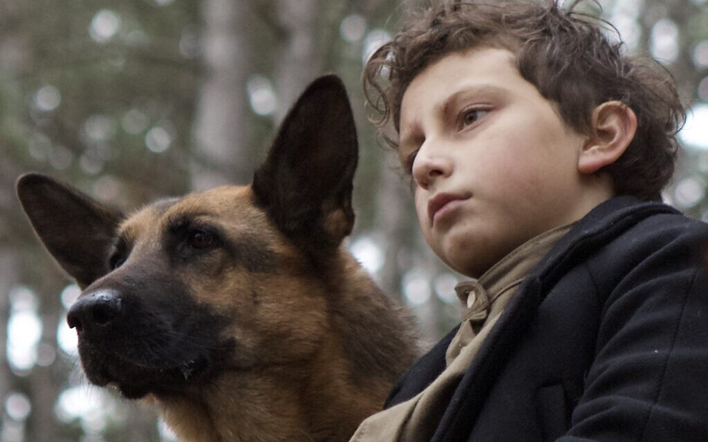 August Maturo as 'Joshua' and dog 'Caleb' in 'Shepherd: The Story of a Jewish Dog' (JDog Films)