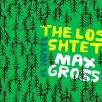 Cover of 'The Lost Shtetl' by Max Gross. (courtesy)