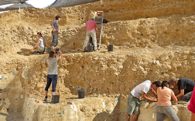 The excavations at the 50,000-year-old Boker Tachtit site in the Negev Desert. (Prof. Elisabetta Boaretto, Weizmann Institute of Science)