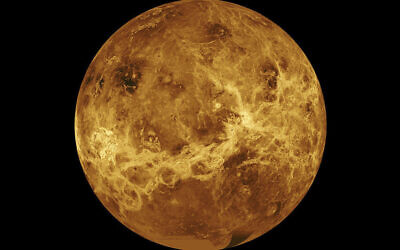 This image made available by NASA shows the planet Venus made with data from the Magellan spacecraft and Pioneer Venus Orbiter. (NASA/JPL-Caltech via AP)