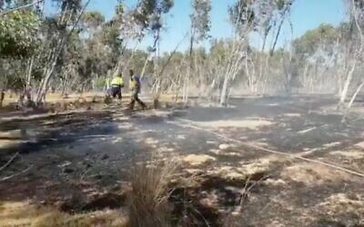 Fire damage to woodlands in southern Israel, allegedly caused by incendiary balloons from the Gaza Strip, June 17, 2021. (video screenshot)