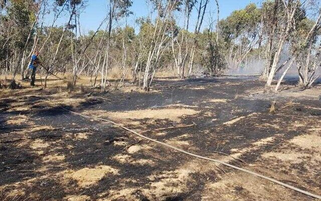 Fire damage caused in the Negev on June 17, 2021, from suspected incendiary balloons from Gaza. (Moshe Bruchi/KKL)
