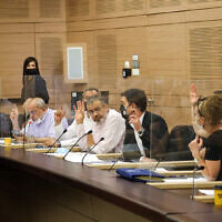 Members of the Knesset House Committee vote to establish a swath of new parliamentary committees, July 25, 2021. (Knesset)