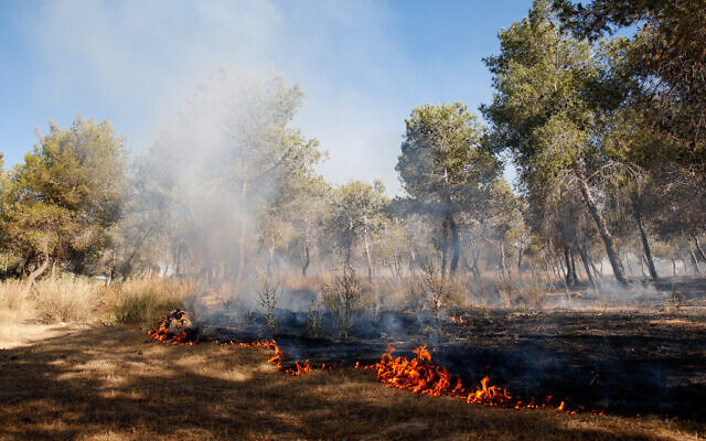 Firefighters try to extinguish a blaze in southern Israel that was sparked by a ballon-borne incendiary device launched by Palestinians in the Gaza Strip, on June 15, 2021. (Flash90)