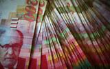 Illustrative image of cash. (Nati Shohat/Flash90)