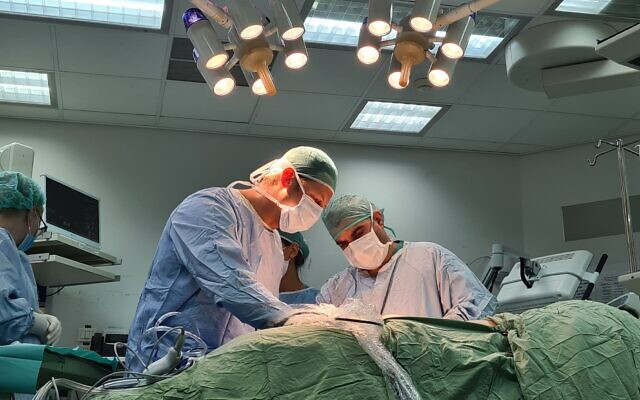 Prof. Eitan Mor removes a kidney of Israeli woman Shani Markowitz at Sheba Medical Center, for transplantation in the United Arab Emirates (courtesy of Sheba Medical Center)