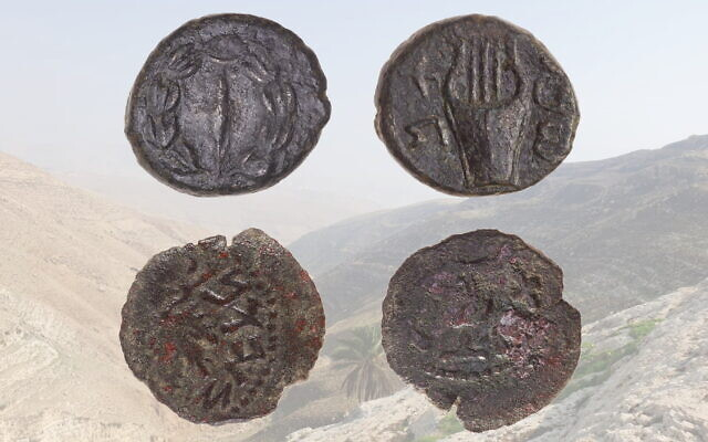 Top: a coin from around 134-135 CE found in Wadi Rashash. Bottom: a coin from around 67-68 CE found at Khirbat Jib'it. Background: Wadi Rashash in the West Bank. (Tal Rogovsky, Yechezkel Blumstein / courtesy)