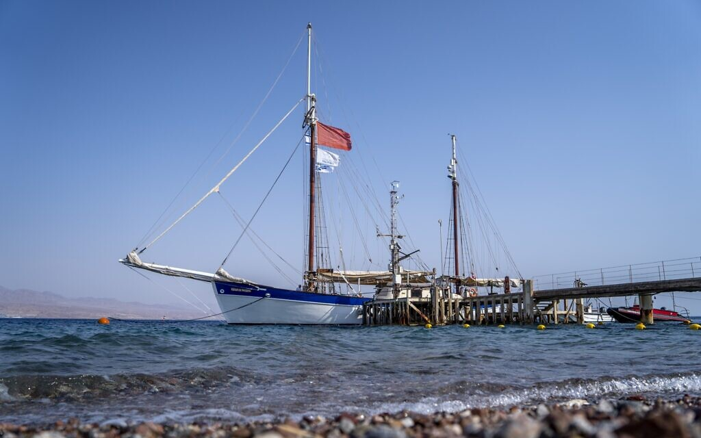 Israeli-European Red Sea coral study delayed by a year after ship runs aground