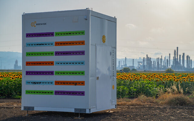 Beewise's autnomous, automated beehive in Israel. (Courtesy)