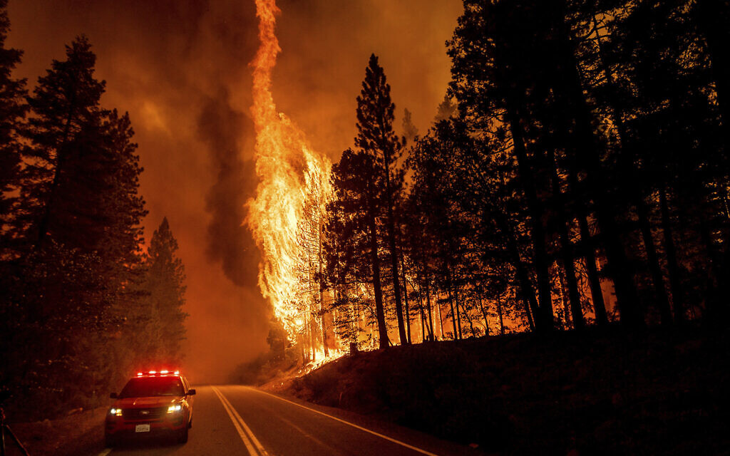 Flames leap from trees as the Dixie Fire jumps Highway 89 north of Greenville in Plumas County, California on Aug. 3, 2021. Dry and windy conditions have led to increased fire activity as firefighters battle the blaze which ignited July 14. (AP Photo/Noah Berger)