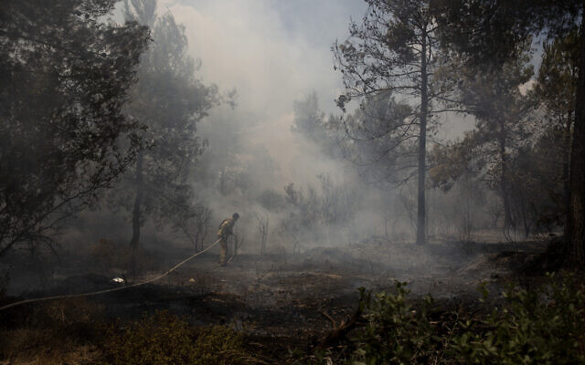 An Israeli firefighter works to battle a second day of wildfires near Shoresh, on the outskirts of Jerusalem, August 16, 2021. (AP Photo/Maya Alleruzzo)