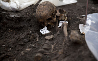 Illustrative: Two adult skulls lie next to each other at an archaeological excavation site in London, March 6, 2015. (AP/Matt Dunham)