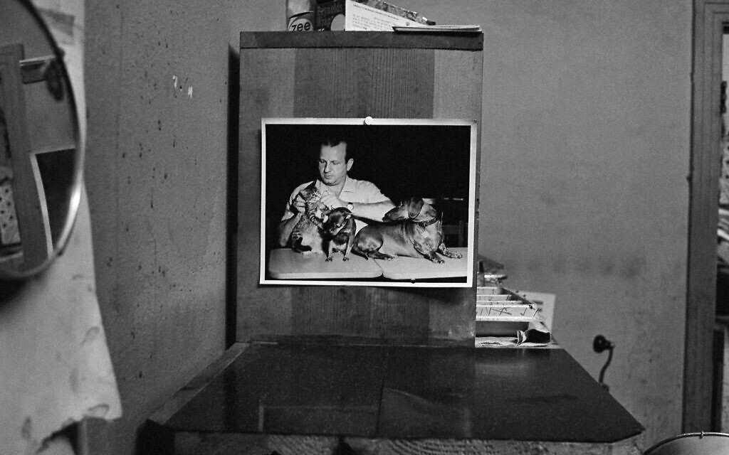 A picture displayed at the Carousel Club in Dallas, Texas, in November 1963 shows owner Jack Ruby with his pet dogs. (AP Photo)