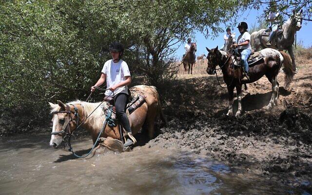 A group of Israelis ride horses through the Jordan River, near Dardara National Park in northern Israel, June 28, 2021. (Michael Giladi/Flash90)