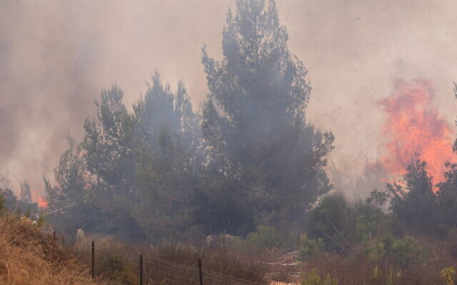 Firefighters try to extinguish a fire which broke out in a forest near Shoresh, outside of Jerusalem, August 3, 2021. (Yonatan Sindel/FLASH90)