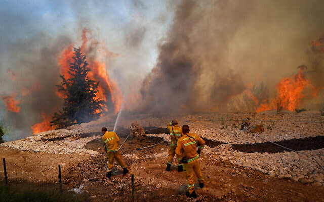 Firefighters try to extinguish a fire which broke out in a forest near Shoresh, outside of Jerusalem, on August 3, 2021. (Yonatan Sindel/Flash90)