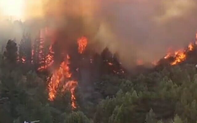Screen capture from video of a forest fire near the northern border city of Kiryat Shmona, on August 12, 2021. (Twitter)