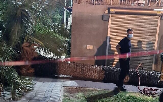 A palm tree that collapsed killed a 66-year-old woman in Tiberias, on August 22, 2021. (Magen David Adom)