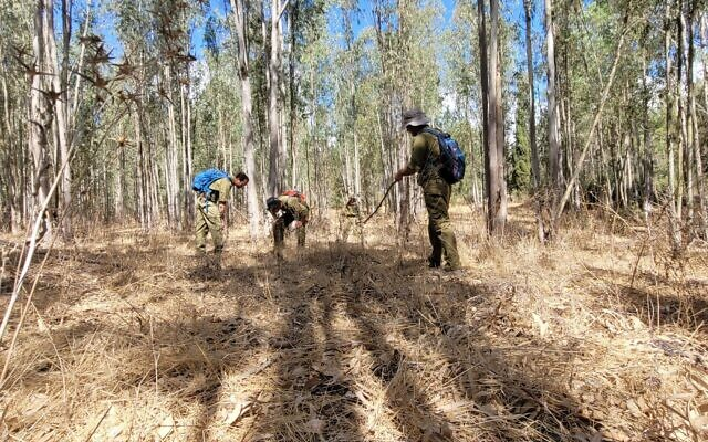 IDF trackers search a woodland area in northern Israel, on September 11, 2021, amid a manhunt for Palestinian jailbreakers. (Israel Defense Forces)