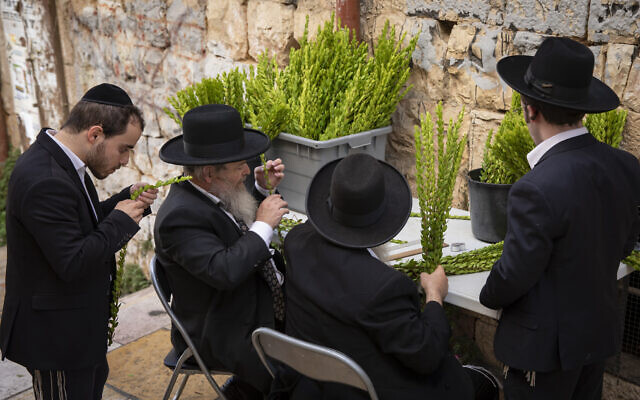 Ultra-Orthodox Jewish men examine a myrtle branches in Mea Shearim in Jerusalem on September 19, 2021 (Olivier Fitoussi/Flash90)
