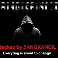 An image released by a hacker called Sangkancil claiming a breach of Israelis' personal information. (Courtesy)