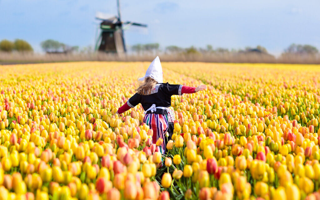 Illustrative photo of a child in a tulip field in Holland. (iStock/ FamVeld)
