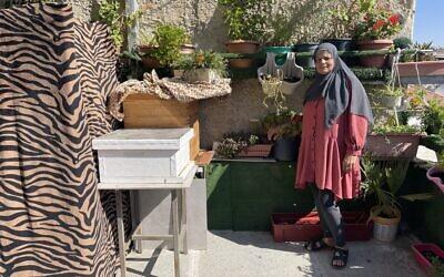 Zahia Abu-Armeilah with her beehive in East Jerusalem's Abu Tor neighborhood. (Sue Surkes/Times of Israel)